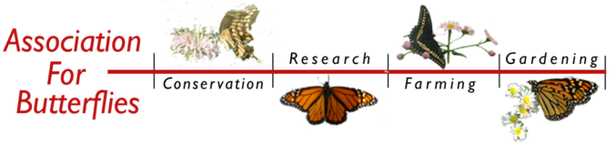 Association for Butterflies