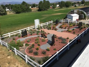 Walt Clark Middle School Butterfly Sanctuary in Loveland, Colorado